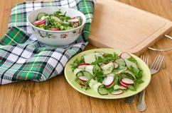 Салат овощей и зеленых цветов Стоковые Фотографии RF