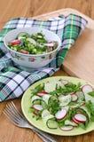 Салат овощей и зеленых цветов Стоковое Изображение RF