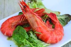 Салат омара стоковые изображения rf