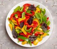 Салат от болгарского перца и базилик в плите фарфора Стоковое Изображение