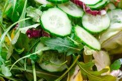 Салат от листьев Стоковое Изображение