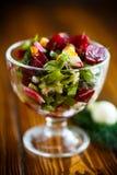Салат от кипеть свеклы с яичками и свежими овощами Стоковые Фотографии RF