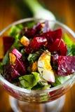 Салат от кипеть свеклы с яичками и свежими овощами Стоковое фото RF