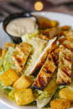 салат питания закона тучной еды цыпленка цезаря свежий Стоковое Фото