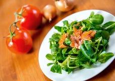 Салат поля с морковью, томатом и луком Стоковые Изображения