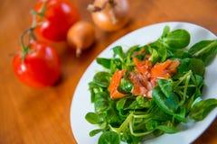 Салат поля с морковью, томатом и луком Стоковая Фотография