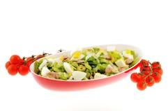 Салат при изолированные тунец и яичко стоковая фотография rf