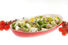 Салат при изолированные тунец и яичко стоковое фото