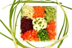 Салат различных овощей видов с сметаной Стоковое Изображение