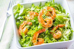 Салат салата креветки морепродуктов на белой плите Стоковое Изображение RF