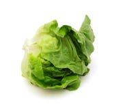 Салат салата стоковое изображение