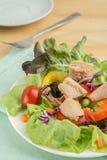 Салат свежего овоща с тунцом стоковые фото