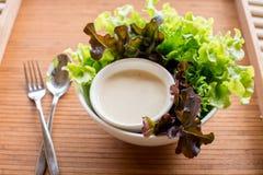 Салат свежих овощей стоковые изображения rf
