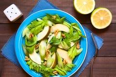 Салат сельдерея, груши и грецкого ореха Стоковая Фотография
