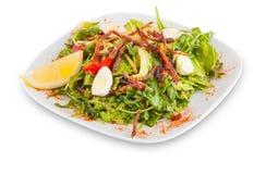 Салат с мясом и зелеными цветами Стоковые Фотографии RF