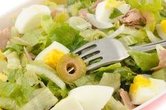 Салат с тунцом и яичком стоковое фото rf