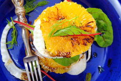 Салат с цитрусом Стоковое фото RF