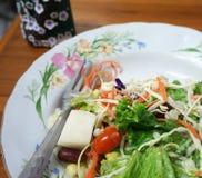 Салат с cream соусом Стоковое фото RF