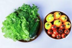 Салат, томаты, петрушка, укроп, огурец Стоковая Фотография RF