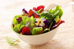 Салат травы с цветками настурции Стоковая Фотография