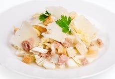 Салат цезаря с тунцом и сыр пармесаном Стоковое фото RF