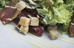 Салат цезаря с цыпленком и бекон 12close поднимают съемку Стоковые Фотографии RF