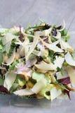 салат цыпленка свежий Стоковое фото RF