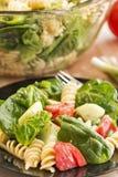 Салат шпината и макаронных изделий rotini Стоковые Фотографии RF