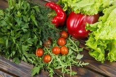 Салат Arugula с томатами Стоковая Фотография