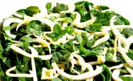 Сырцово, еда vegan: салат шпината, фенхеля и мяты стоковая фотография rf