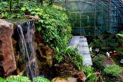 Сад бабочки Стоковая Фотография