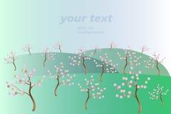 Сад весны зацветая: зеленые, серые холмы, голубое небо, градиент, деревья имеют коричневые хоботы и розовые цветки Стоковые Фотографии RF