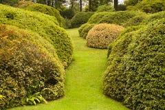 Сад виллы Carlotta Стоковые Фото