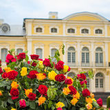 Сад дворца Стоковая Фотография RF