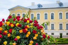 Сад дворца Стоковые Изображения RF