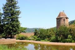 Сад дворца, weinheim, южная Германия Стоковые Изображения