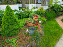 Сад в дворе перед входом Стоковые Изображения RF