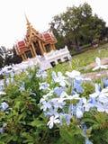Сад в красивое естественном rama9 Стоковые Изображения RF