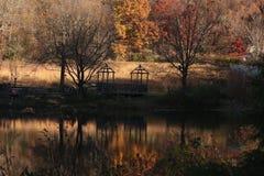 Сад в падении Стоковые Изображения