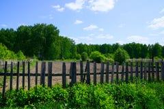 Сад в древесинах Стоковое фото RF