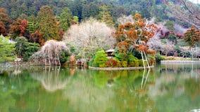 Сад в Японии Стоковая Фотография