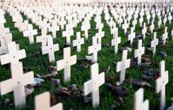 Сад день памяти погибших в первую и вторую мировые войны пересекает конец-вверх стоковая фотография rf