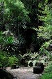 сад естественный Стоковые Изображения