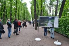Сад лета парка в StPetersburg Стоковая Фотография