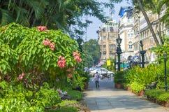 Сад заводов и цветков Horniman в городе стоковое фото