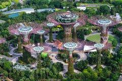Сад заливом Стоковое фото RF