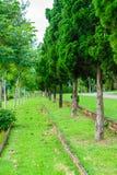 Сад и дорога в парке Стоковая Фотография RF