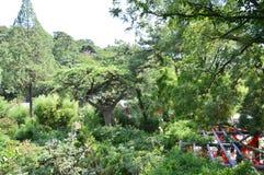 Сад китайца ландшафта горы Стоковые Изображения RF