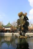 Сад Китая Стоковая Фотография