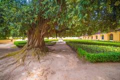 : сад королевских монастыря и дворца дворца Mafra, барочных и неоклассических, монастыря Стоковые Изображения